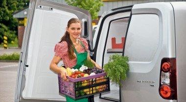 Холодильник на развоз: рефрижераторы малой мощности
