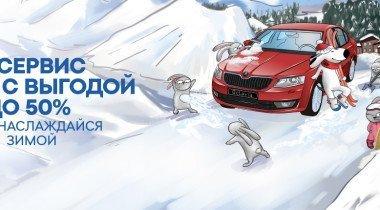 Зимнее предложение от Skoda: сервис со скидкой до 50%