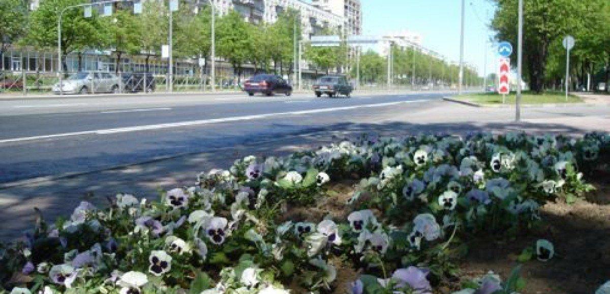 Китайцы и вьетнамцы с Черкизовского рынка попытались перекрыть Щелковское шоссе