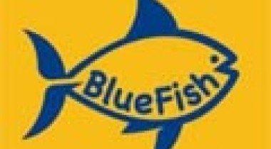 Компания BlueFish дает гарантию на автомобили с пробегом