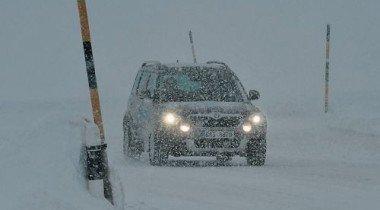 Московские власти не намерены отвечать за упавшие на автомобили деревья