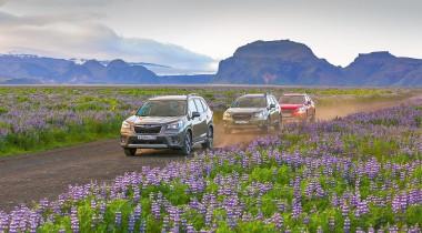 На Subaru по Исландии: на полпути вАмерику