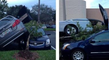 Водитель обвиняет в аварии несуществующий Park Assist