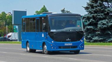 Пригородные и междугородные автобусы: особенности и отличия