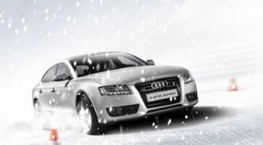 Audi quattro camp открывает новый сезон