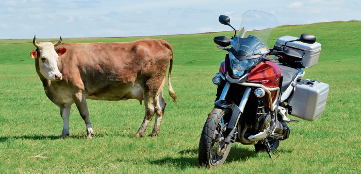 Honda VFR1200X Crosstourer. Родина-мать — ответный удар