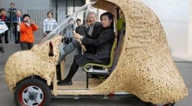 Японские разработчики сконструировали бамбуковый автомобиль на электрической тяге