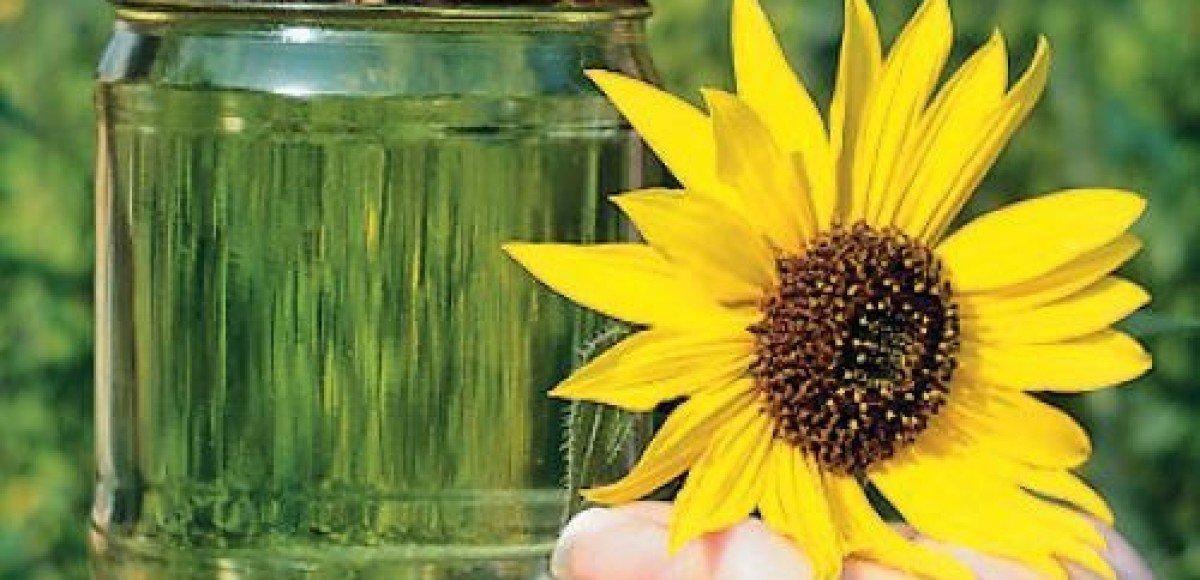 Биотопливо: Ложка дегтя в бочке меда