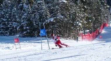 Снежная Барса: лыжи, Формула-1 и международные права