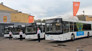 Автобусы МАЗ: все для столицы
