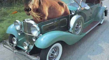Volvo как тренажер для лошади