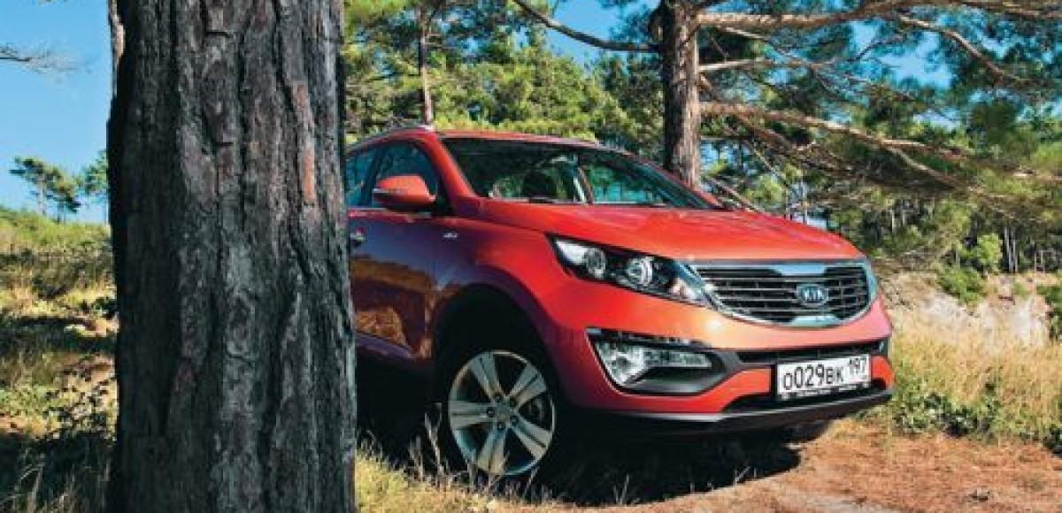 Компания KIA Motors стала лидером по ввозу легковых автомобилей в Россию