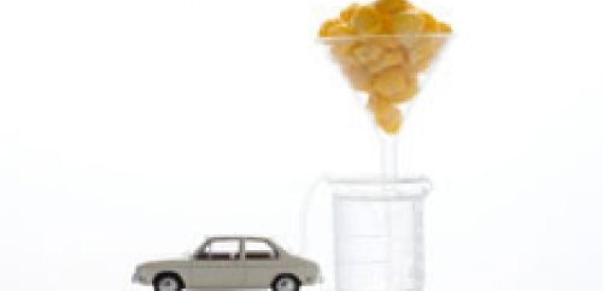 На украинских спиртзаводах будут выпускать биотопливо