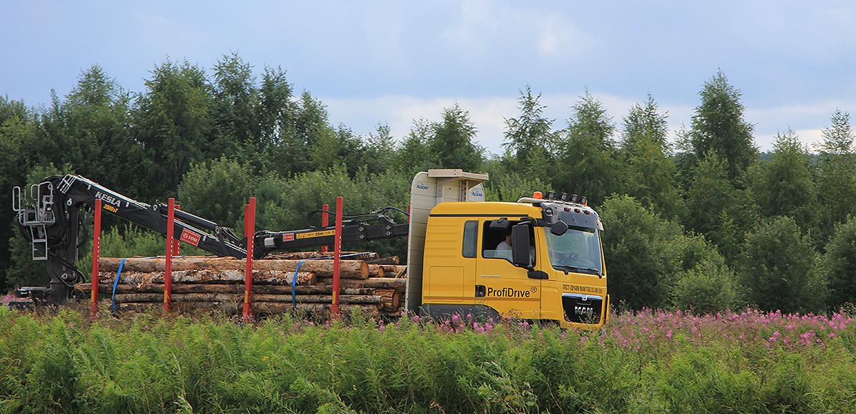 Чемпионы леса: заготовка и транспортировка древесины в XXI веке