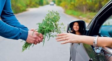 Вежливая безопасность: как культура вождения влияет на аварийность