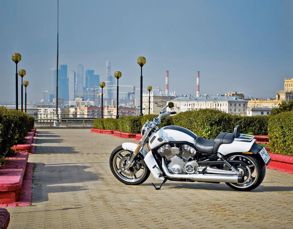 Harley-Davidson V-Rod Muscle. Мужской род