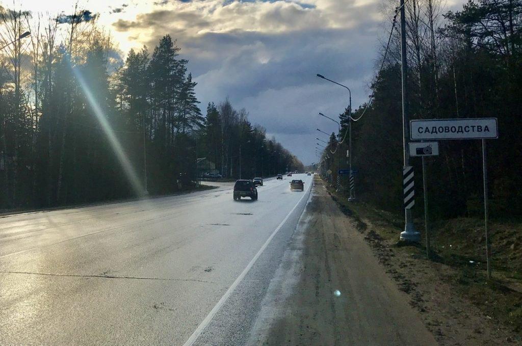 При поездках на дачу в Ленобласти запретят выходить из машины