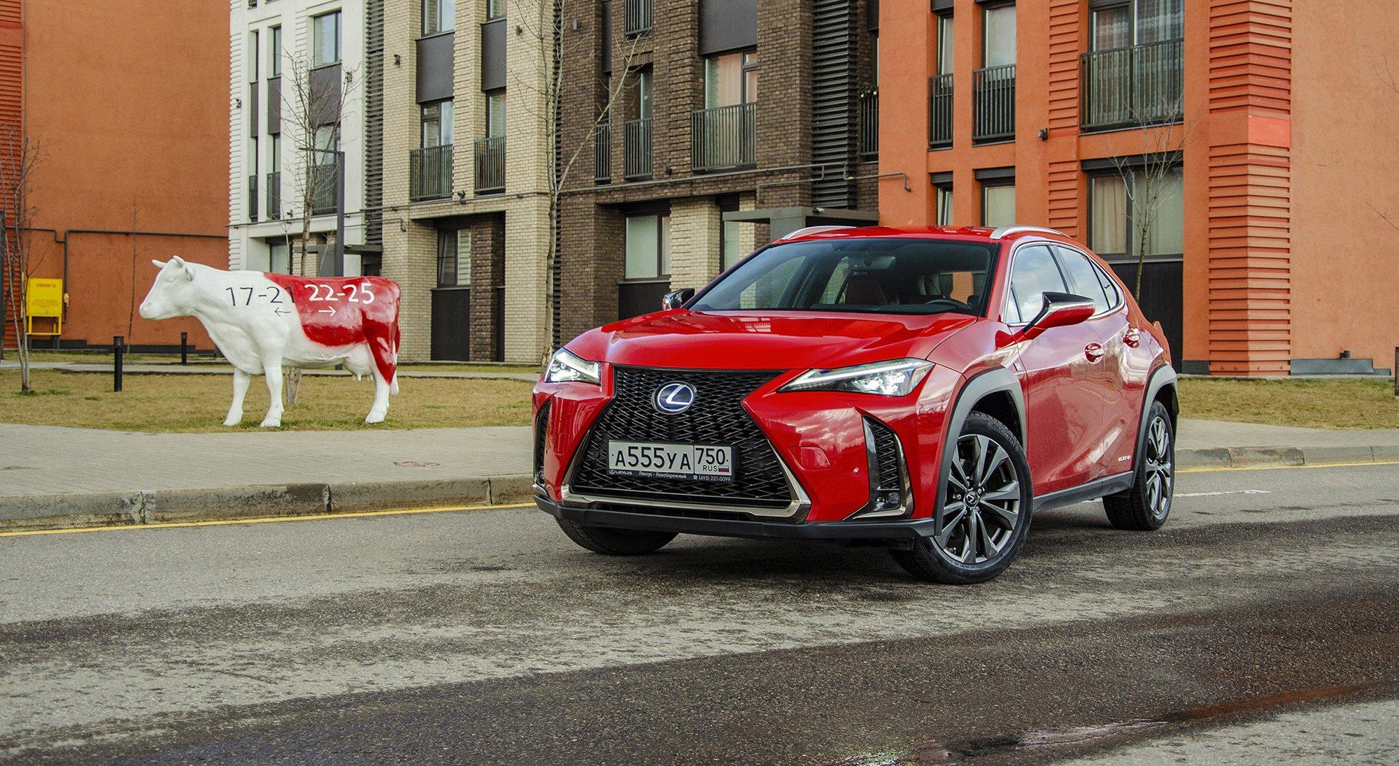 Длительный тест гибридного Lexus UX: от разочарования кпониманию