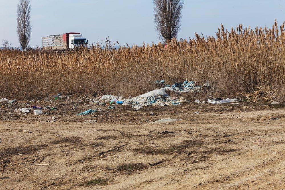 Водителей накажут за мусор: новый штраф до 200 тысяч рублей